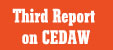 Thrid Report on CEDAW